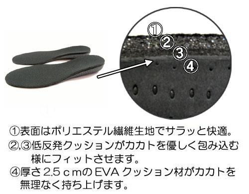 カカトフィット&アップインソール2.5cm#2 コロンブス スタイルソリューションCOLUMBUS Style Solution説明1