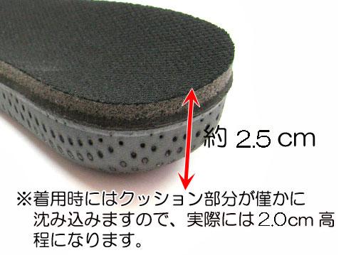 カカトフィット&アップインソール2.5cm#2 コロンブス スタイルソリューションCOLUMBUS Style Solution説明2